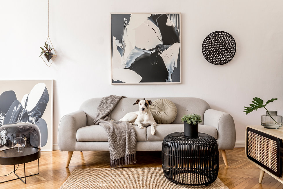 Stylish and scandinavian living room interior of modern apartment with gray sofa, design w