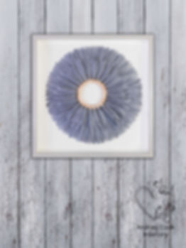 Grey feather wall art in a box frame painted white and grey