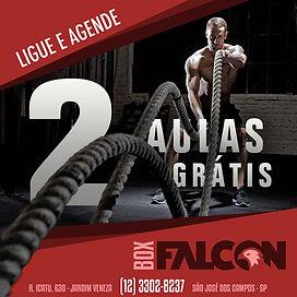 FALCON 2 AULAS GRATIS.jpg