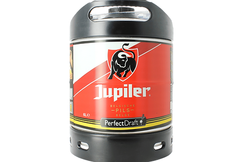 Fût 6L Jupiler blonde