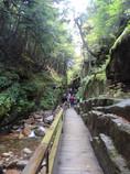Wanderung durch die Schlucht Flume Gorge im Franconia State Park