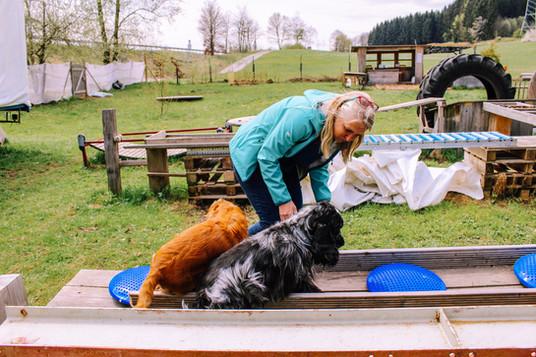 Naturhundegarten-15.jpg