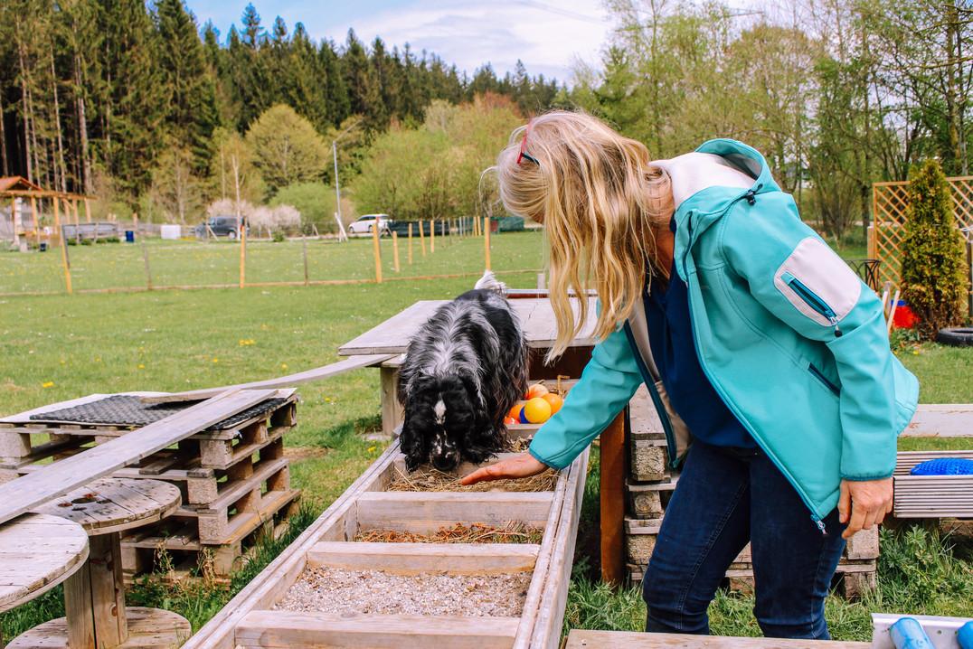 Naturhundegarten-18.jpg