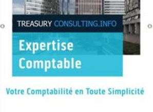 Treasury consulting LOGOBIG.jpg 2.JPG
