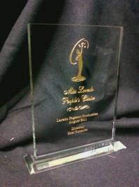 """Glass 6""""x8"""" Award"""