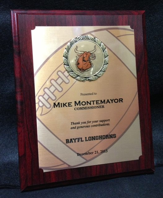 8x10 Rdwd Plaque, Sublimated Gold plate with Mounted logo.jpg