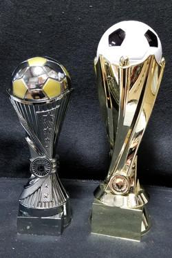 New Soccer Trophy