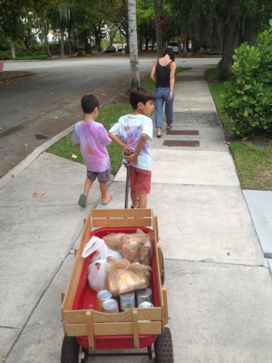 Collecting food in our neighborhood last Sunday. The food bank we delivered to serves 5000 people/month.