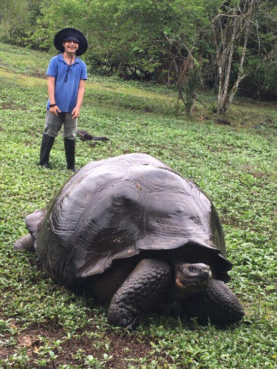 Bodhi Galapagos 2019