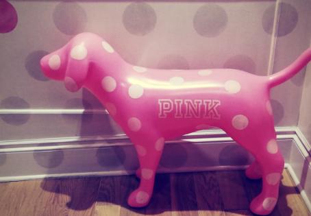 PINK! en de kracht van girls only