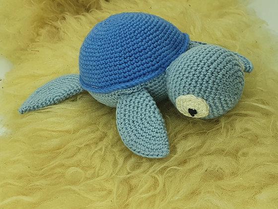 Schildi Schildkröte