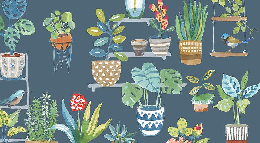 Plants1petrol.jpg