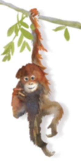 MonkeyIG.jpg