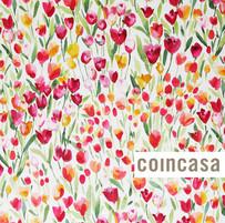 CoinCasa1.jpg