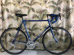 59cm Marinoni sport touring