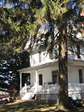 House with Tree.jpg