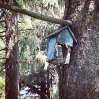Bird house- BLue.jpg