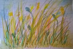 Grasses1