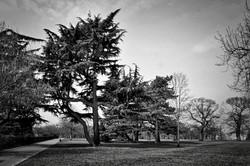 #greenwichpark