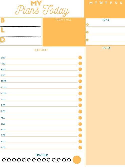 Today's Plans- Orange