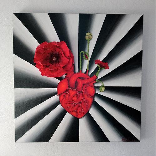 A coeur battant... Le pavot