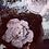 Thumbnail: Bijou de tête fleur rose poudrée