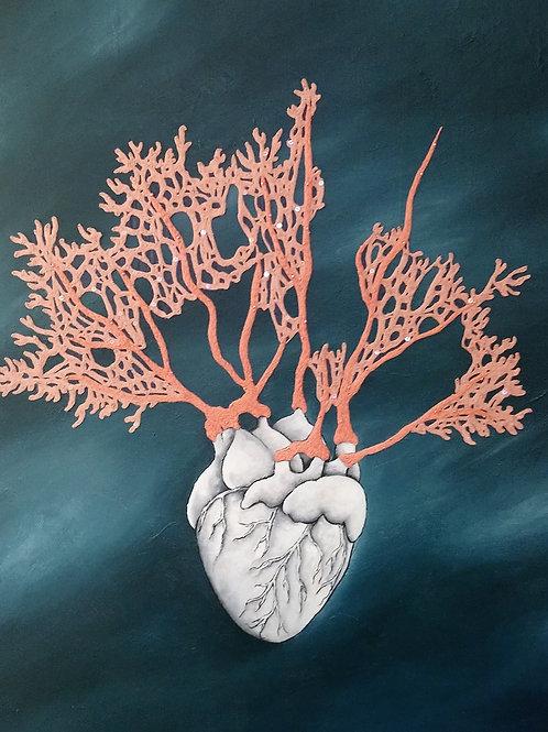 A coeur battant... Le corail