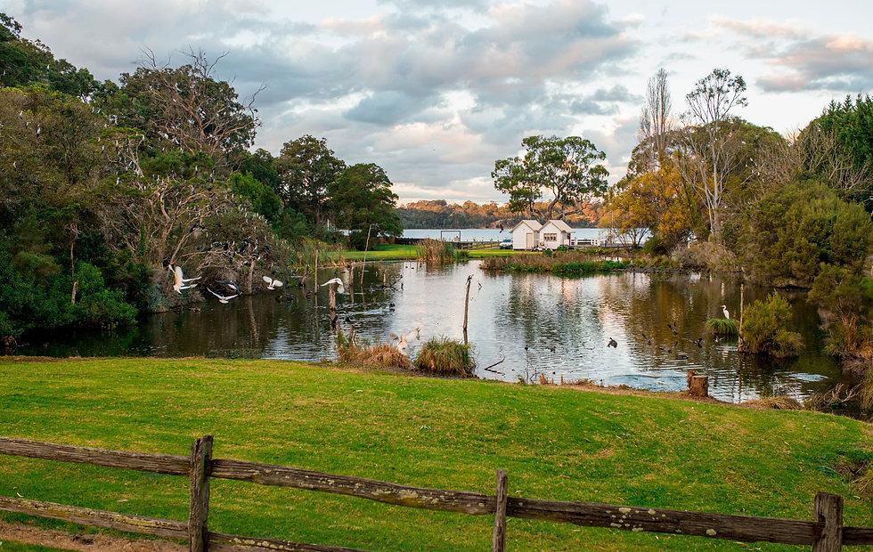 Pond at McMillans of Metung Coastal Resort