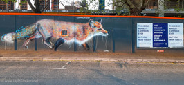 Street_Art_Signs_111.jpg