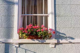 windows_025.jpg