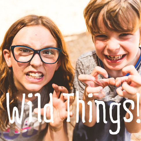 Where The Wild Bugs Are! - First Day at String Camp 2016