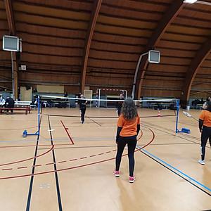 Départemental de Badminton