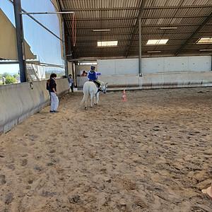 Journée Equitation