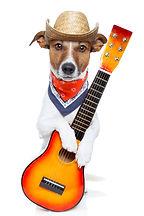 CuteDog&Guitar_iStock_000019694263XSmall