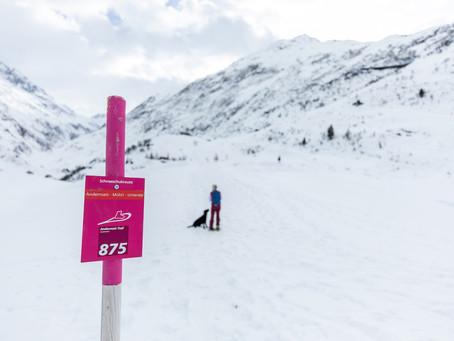Andermatt – ein Wintergenuss auf Schneeschuhen