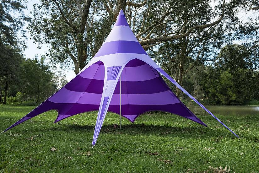 Concentric - Purple