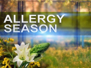5 HVAC Tips to Help You Get Through Allergy Season