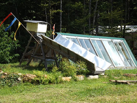 Greenhouse and dryer.JPG