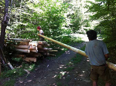 pole stacking small220.jpg
