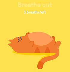 breathing cat.jpg