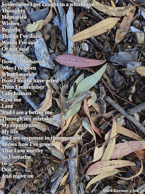 whirlwind poem