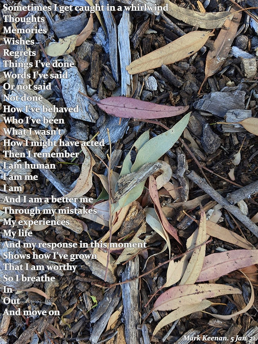 whirlwind poem