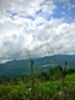 Mont G2.jpg