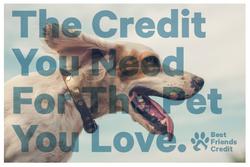 Best Friends Credit