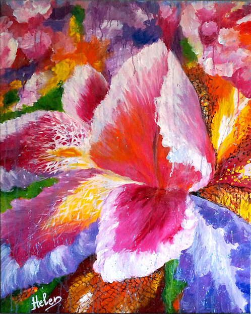 Blooming Iris artwork