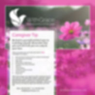 WGH_Care-Giver-Tip_AD_1080x1080.jpg