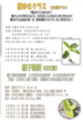 wix4.jpg