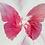 Thumbnail: Pink Butterfly ii