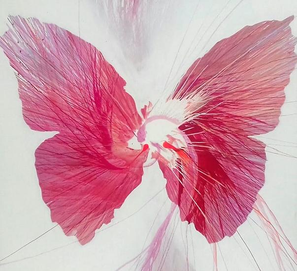 Pink Butterfly ii