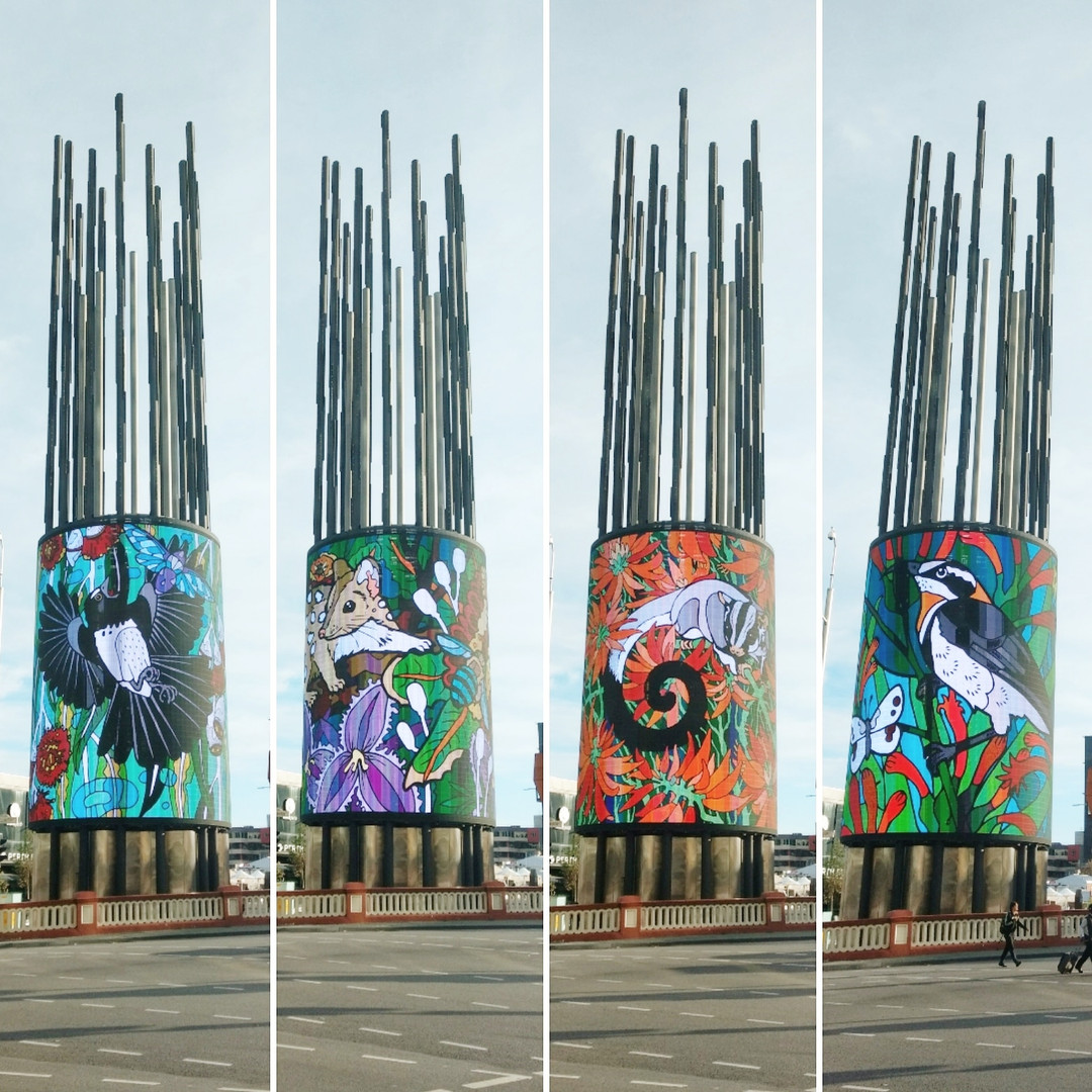 Yagan Square Projections